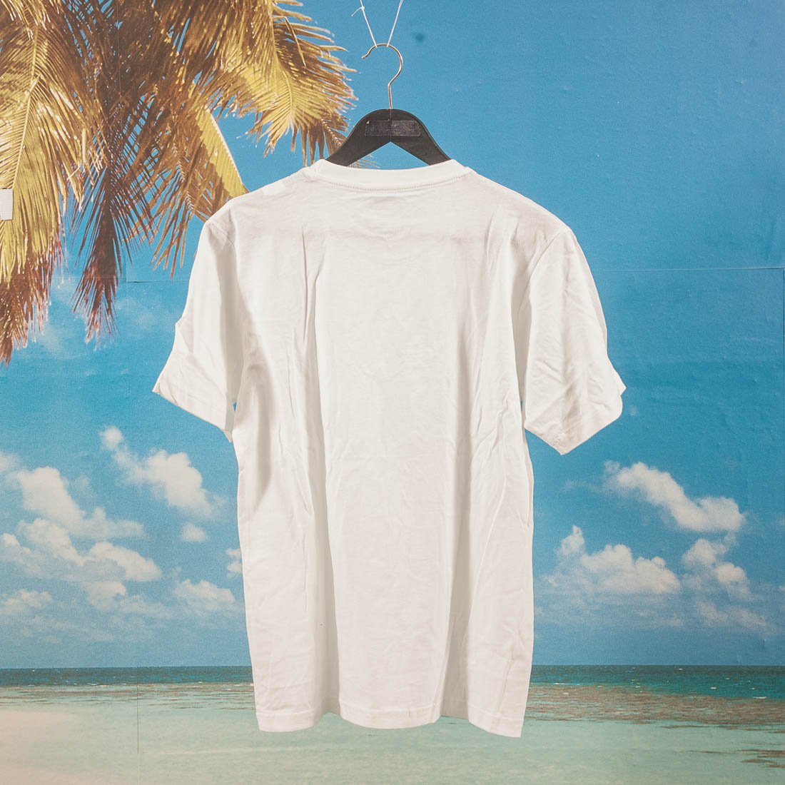 Dickies - T-Shirt 3 Pack - White
