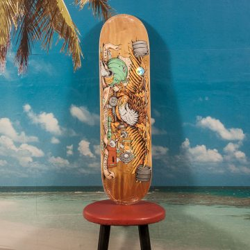 Antihero Skateboards - Pumping Feathers Deck - 8.28